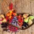 Stock Photo: Seasonal Fruits