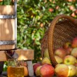 zumo de manzana recién exprimido — Foto de Stock