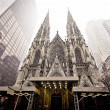 Cathedral of Saint Patrick in blizzard — Stock Photo
