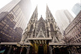 Cathedral of Saint Patrick in blizzard — Stock fotografie