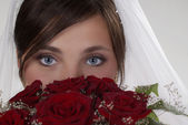 Big blue eyes — Stock Photo