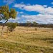 Australian landscape — Stock Photo