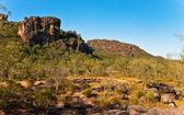 Park narodowy kakadu — Zdjęcie stockowe