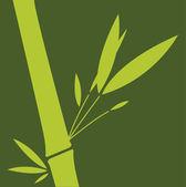 Green bamboo leaf. Vector illustration. — Stock Vector