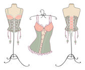 Variety of sexy vintage corsets — Stock Vector