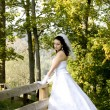 Bride next to a wooden fence — Stock Photo #4864722
