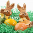 Easter, Osterhase — Stock Photo #4965140