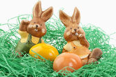 Easter, Osterhase — Stock Photo