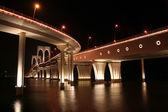 Governor Nobre de Carvalho Bridge in Macau — Stock Photo