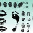 Vector de stock : Fingerprints footprints and lips 2