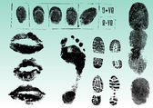 Fingerprints footprints and lips 2 — Vector de stock