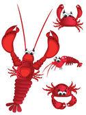 Shrimp — Stock Vector