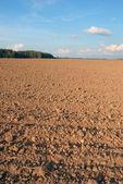 Arable land area — Stock Photo