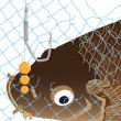 Network carp fish hook bubbles — Stock Photo