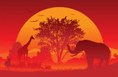 African Safari — Stockvector