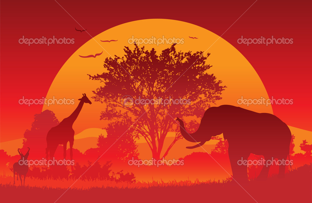 Animals gather at an African Sunset. Created in Adobe Illustrator. EPS 8.  Stock Vector #5038980