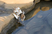 Crocodile attacks ship — Stock Photo