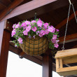 Stock Photo: Basket with flower