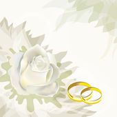 White rose and wedding rings — Stock Vector
