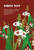 Ongebruikelijke bloemen — Stockvector