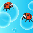 Adybugs on bubble — Stock Vector #5053184