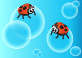 Adybugs on the bubble — Stock Vector