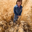 Searching for leftover wheat stalks - Stock Photo