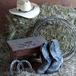 Things on a ranch. — Stock Photo