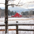 Barn by snowy field. — Stock Photo