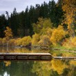 Autumn by a lake. — Stock Photo