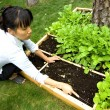 Tending her garden. — Stock Photo #4897510
