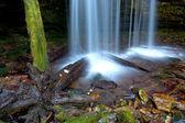 Part of Fern Falls. — Stock Photo