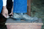 Putting on spurs. — Stock Photo