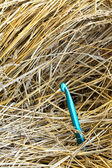 Large needle in a haystack. — Stock Photo
