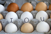 IOU in the egg carton. — Stock Photo