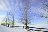 зима в прерии — Стоковое фото