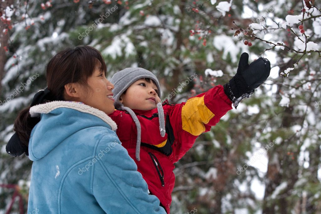 A boy being held by his mother reaches up for snow covered berries. — Stock Photo #4890811