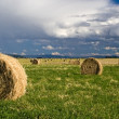 Royalty-Free Stock Photo: A panorama of hay in a field.