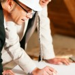 Architect and construction  — Stock Photo #5023595