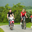 Foto Stock: Family having riding their