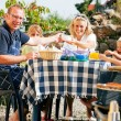 Family having a barbecue in the - Stock Photo