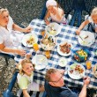Family having a barbecue in the — Stock Photo #5024413