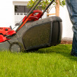Man mowing lawn in his garden — Stock Photo