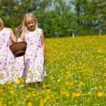 Children on an Easter Egg hunt — Stock Photo