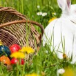 Easter bunny with eggs on a — Stock Photo #5024468