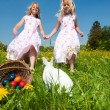Easter bunny on a beautiful — Stock Photo #5024493