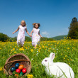 Easter bunny on a beautiful — Stock Photo #5024494