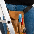 Stock Photo: Female worker on a ladder with