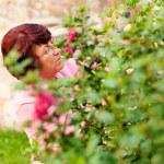 Gardening - woman harvesting — Stock Photo #5050426
