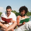 Couple reading books in the - Stock Photo